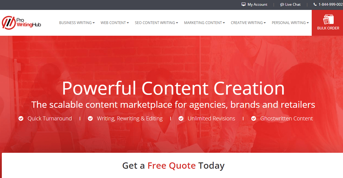 prowritinghub.com
